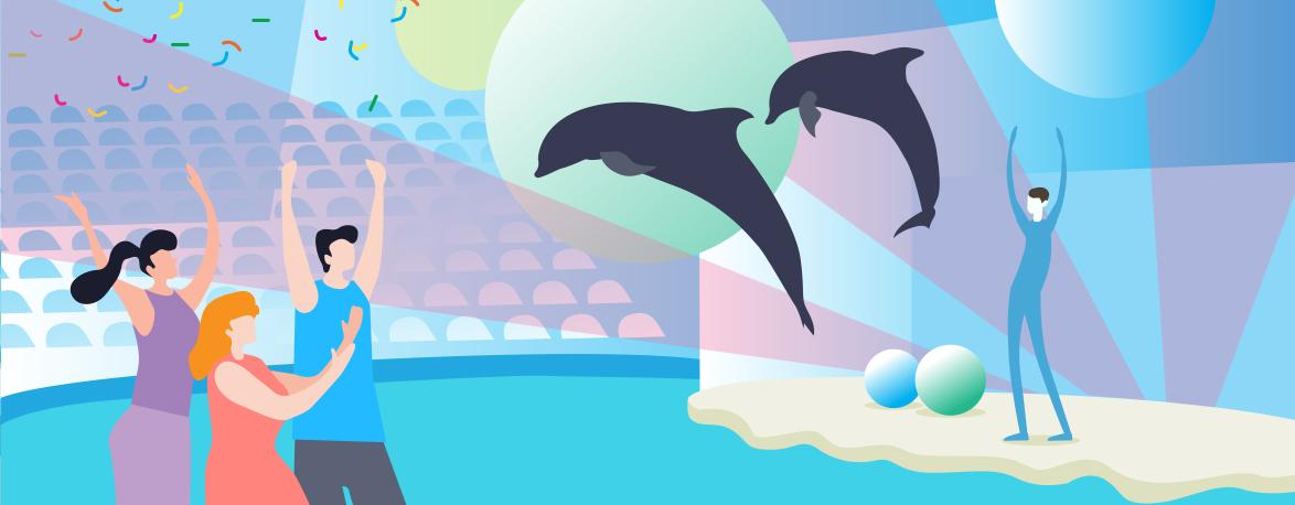 Купить билеты онлайн в дельфинарий Коктебель — Поплавать с дельфинами
